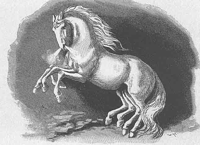 heste kamp i middelalderen